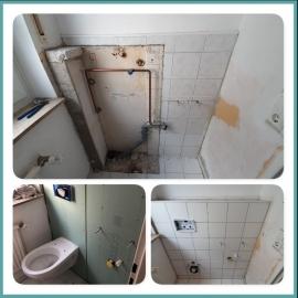 Wasserschaden WC Rückwand